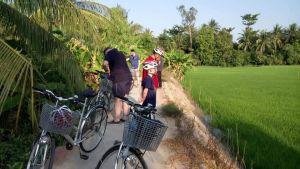 ricefield_bike_1.jpg